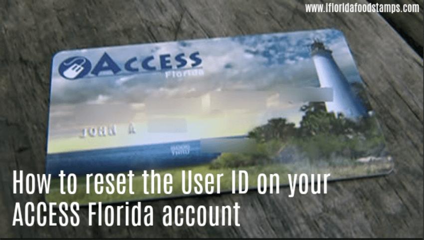 MyAccess Florida User ID Reset